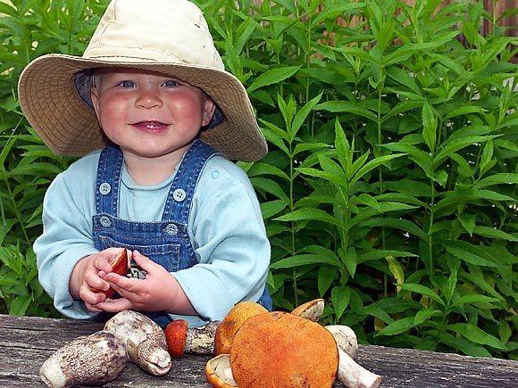 Чи можна дітям їсти гриби